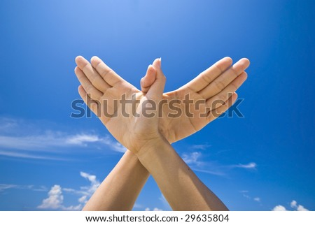 hand sign of dove with blue sky background
