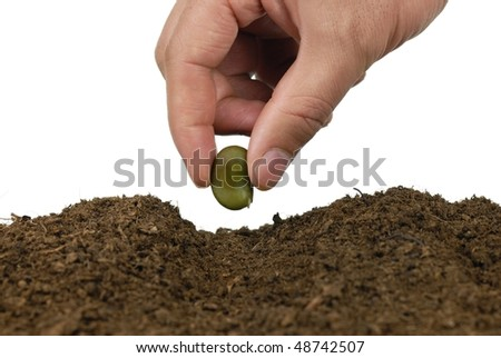 Hand sowing seed into soil - stock photo