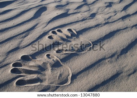 hand stamp on the sand
