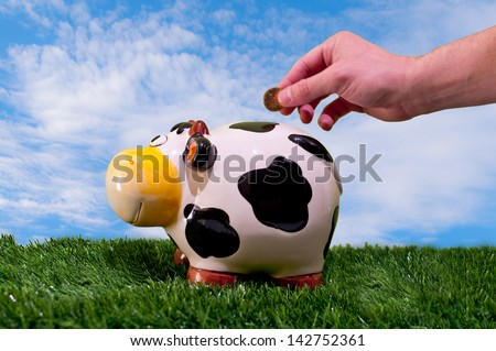 Hand throwing a coin into a piggy bank of a cow esobre fresh green grass and a blue sky and coun silky clouds - stock photo