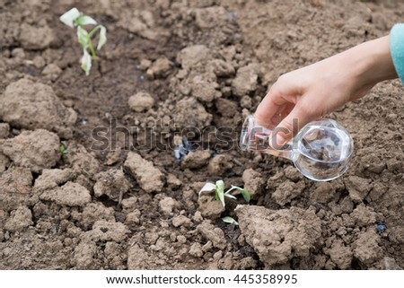 Hand with a test tube and plant. Fertilizer in laboratory glassware.
