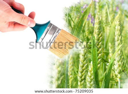 Hand with brush painting natural image. Summer concept. - stock photo