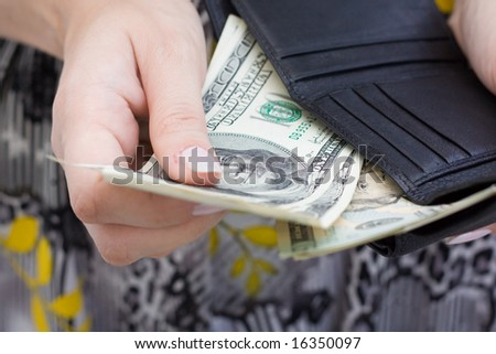 Hand with dollars and purse - stock photo