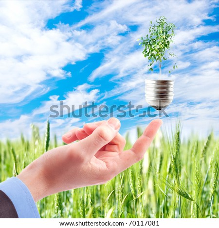 Hand with lamp and plant - stock photo