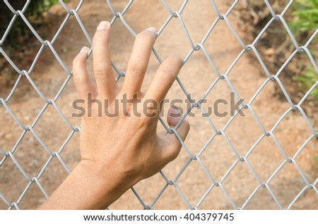 Hand with mash cage,Steel mesh fence