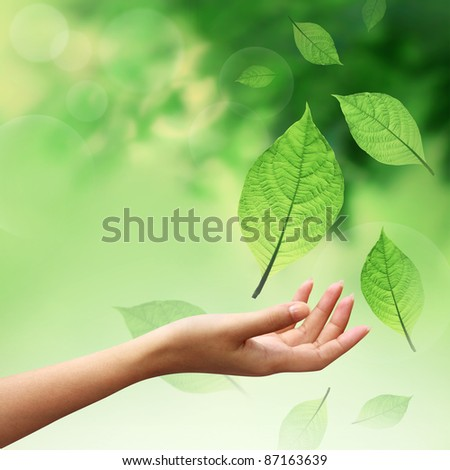 Hand with nature element leafs - stock photo