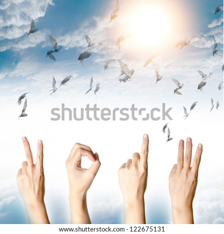 hand with new year 2013 abstract with doves flying on blue sky and cloud background