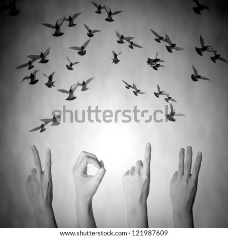 hand with 2013 number and flying doves new year black and white background