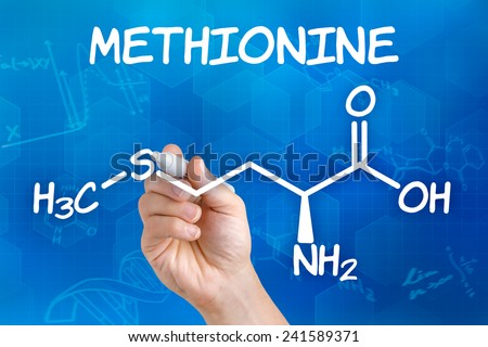 Hand with pen drawing the chemical formula of methionine - stock photo