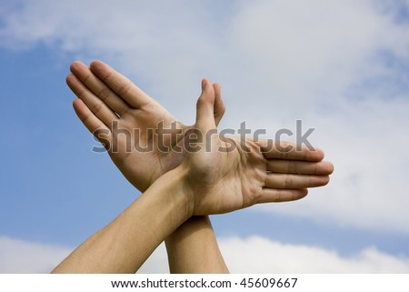 Hand with the Sky Background show want to fly. - stock photo