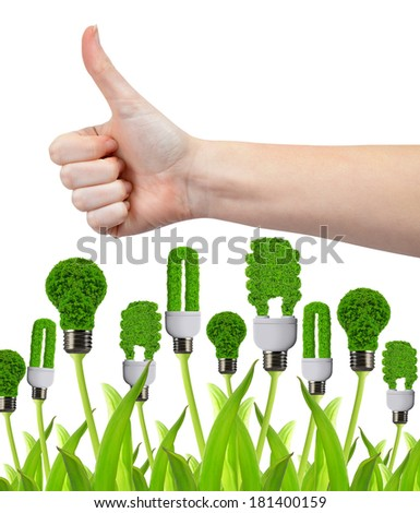 Hand with thumb up and eco energy bulbs isolated on white. Green energy concept - stock photo