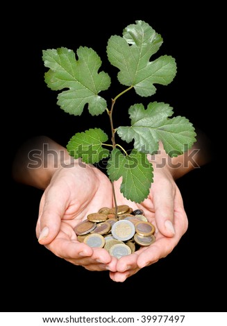 Hand with tree growing from pile of coins