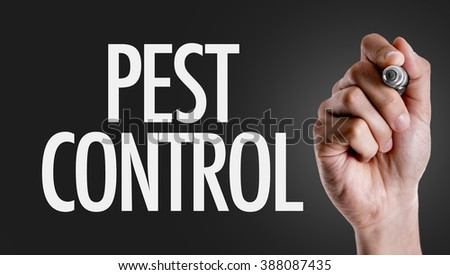 Hand writing the text: Pest Control - stock photo
