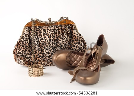 handbag, gold bracelet, and shoes with a heel - stock photo