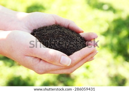 Handful of black soil, closeup - stock photo