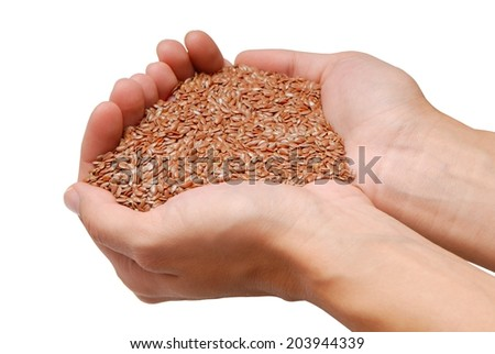 handful of flax-seed is in female hands  - stock photo
