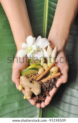 Handful of herbs, spices and flower used in spa treatment. - stock photo