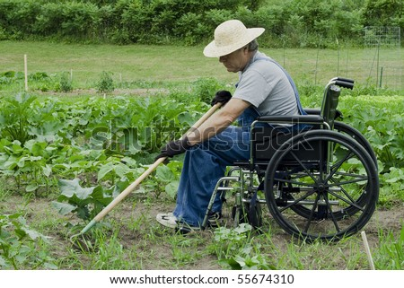 handicapped man in a wheelchair tending his garden - stock photo