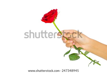 handing a rose as a representation of love to someone