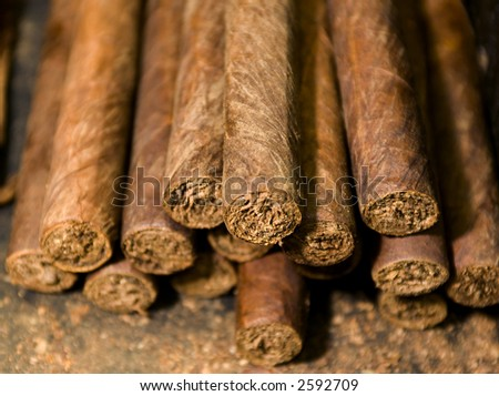 handmade freshly rolled cigars dominican republic tobacco - stock photo