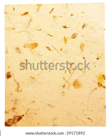 handmade paper with organic insertions and grunge surface - stock photo