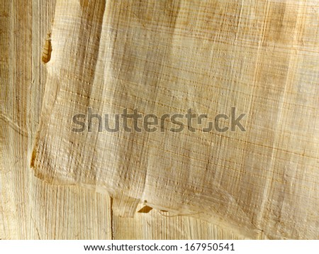 Handmade papyrus paper from egypt - an excellent background in high resolution - stock photo
