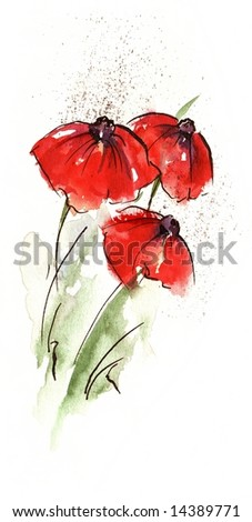 Handpainted floral watercolor illustration: Red poppie flower and green leave and grass isolated on white.Art is created and painted by photographer. - stock photo