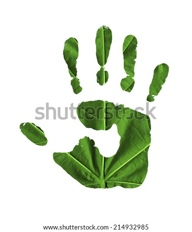 handprint on the green leaves of the trees