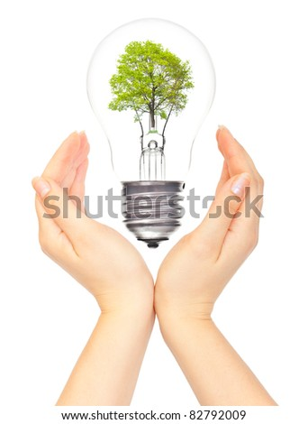 Hands and eco light bulb on white - stock photo