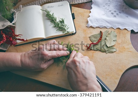 Hands cutting herbs - stock photo