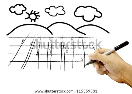 Hands drawing field and sky on white paper - stock photo