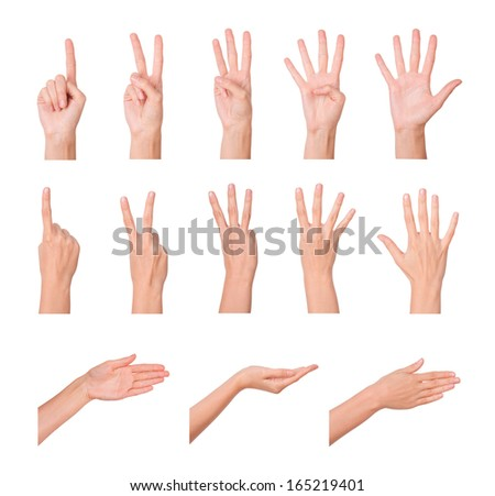 Hands, fingers and numbers. On a white background. Isolated - stock photo