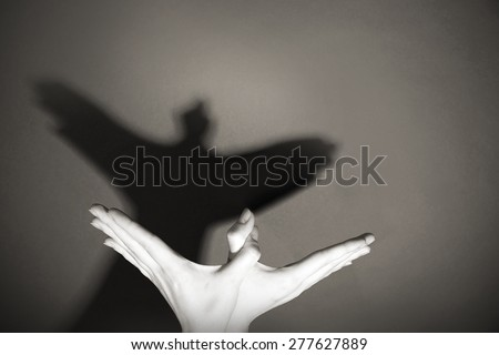 Hands gesture like dove on gray background - stock photo