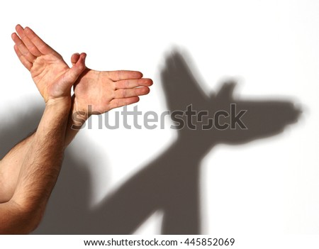 Hands gesture like dove on white background.   - stock photo