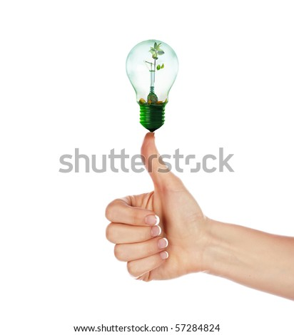 Hands girls and light with a small sprout inside. The symbol of environmental protection. - stock photo