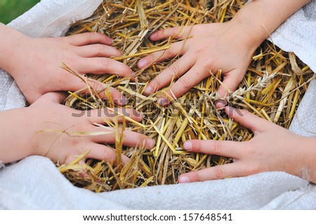 hands grabbing in a bag filled with straw