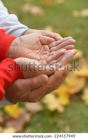 Hands held together on a natural background - stock photo