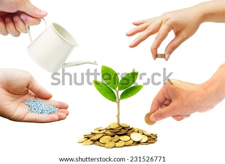 Hands helping planting trees growing on coins together - Building business with csr and ethics - stock photo