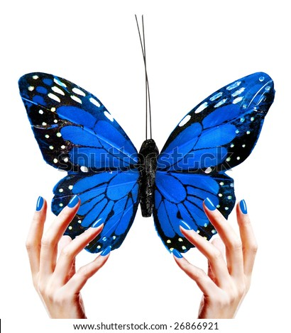 Hands holding a butterfly - stock photo