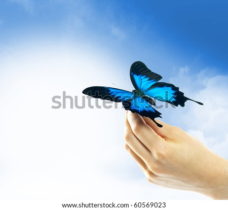 Hands holding a butterfly against a blue sky - stock photo