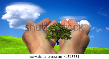Hands holding a tree against a blue sky