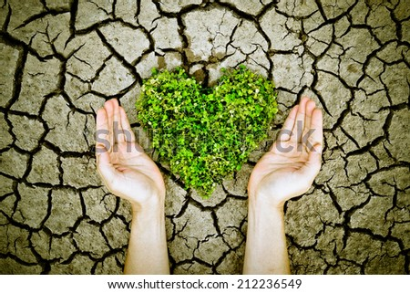 hands holding a tree arranged as a heart shape on cracked earth / growing tree / love nature / save the world / csr - stock photo