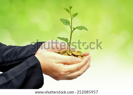 hands holding a tree growing on golden coins with green background - business with csr practice