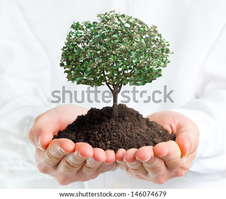 Hands holding a tree with money - stock photo