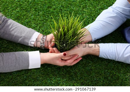 Hands holding a young plant - stock photo