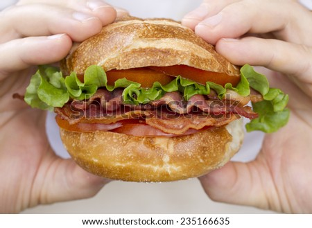 Hands holding BLT sandwich. - stock photo