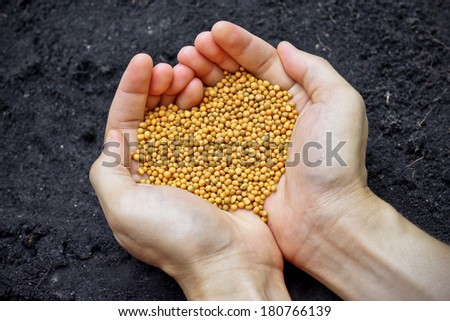 hands holding chemical fertilizer as a heart shape over fertile soil - stock photo