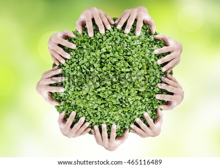 Hands holding circle green shrubs on blue circle bokeh background. Beautiful landscape of blurred scene summer ocean beach. World Conservation concept.