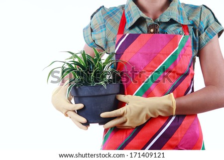 Hands holding flowerpot isolated on white background, gardening concept
