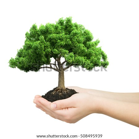 hands holding green plant 3D illustration